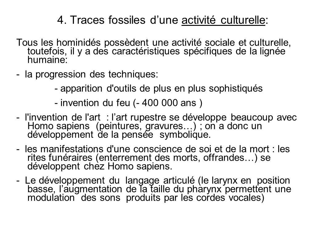 4. Traces fossiles d'une activité culturelle: