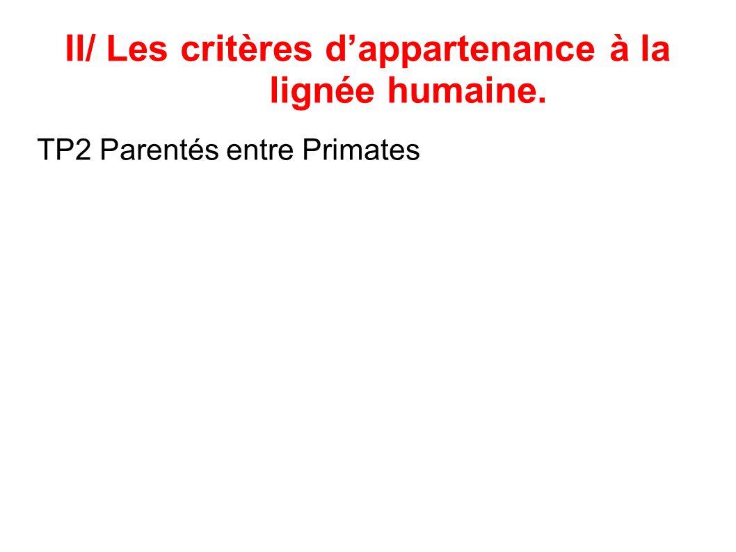 II/ Les critères d'appartenance à la lignée humaine.