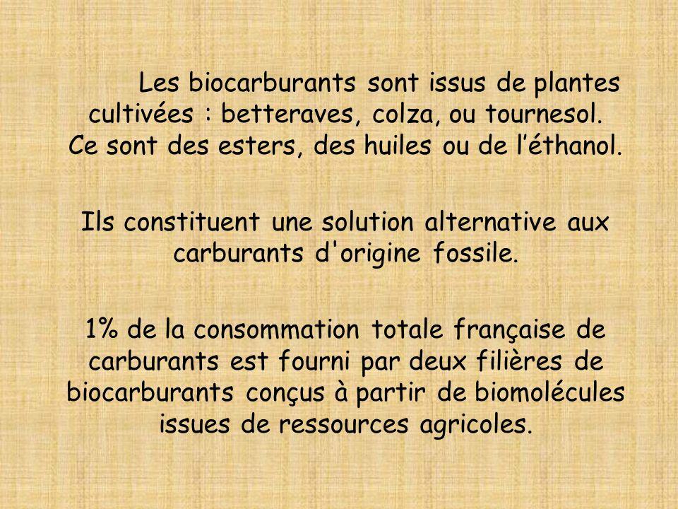 Les biocarburants sont issus de plantes cultivées : betteraves, colza, ou tournesol. Ce sont des esters, des huiles ou de l'éthanol.