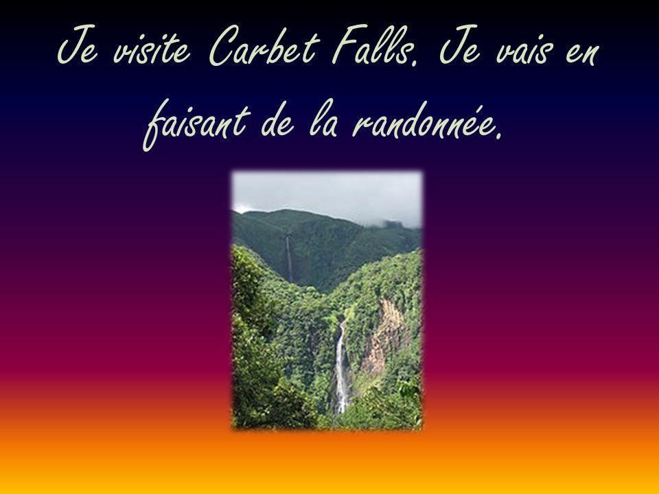Je visite Carbet Falls. Je vais en faisant de la randonnée.