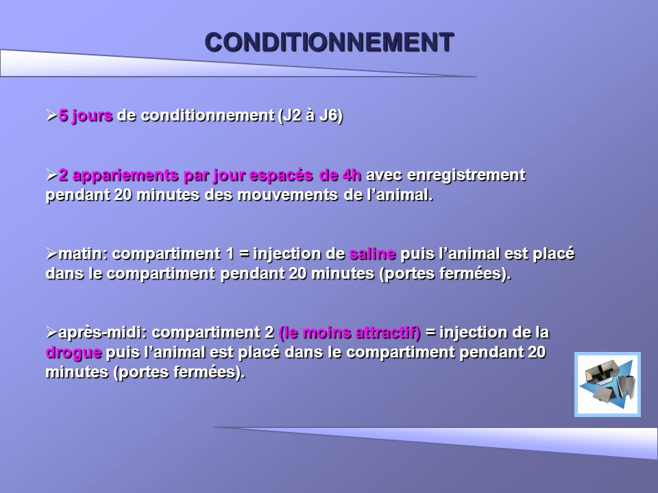 CONDITIONNEMENT 5 jours de conditionnement (J2 à J6)
