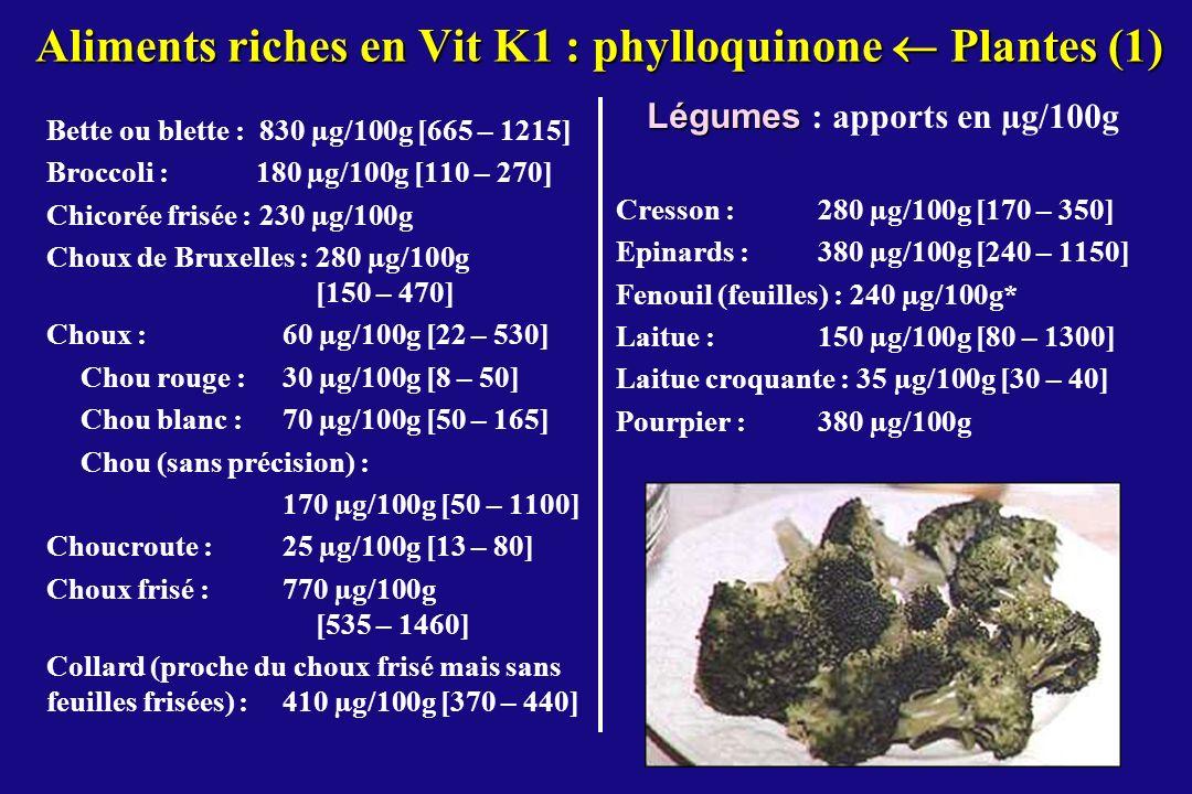 Aliments riches en Vit K1 : phylloquinone  Plantes (1)