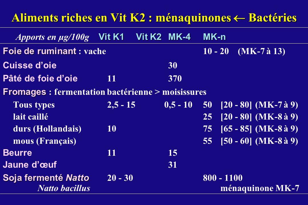 Aliments riches en Vit K2 : ménaquinones  Bactéries