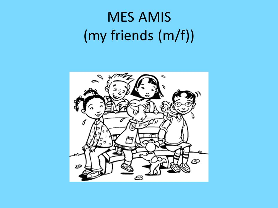 MES AMIS (my friends (m/f))