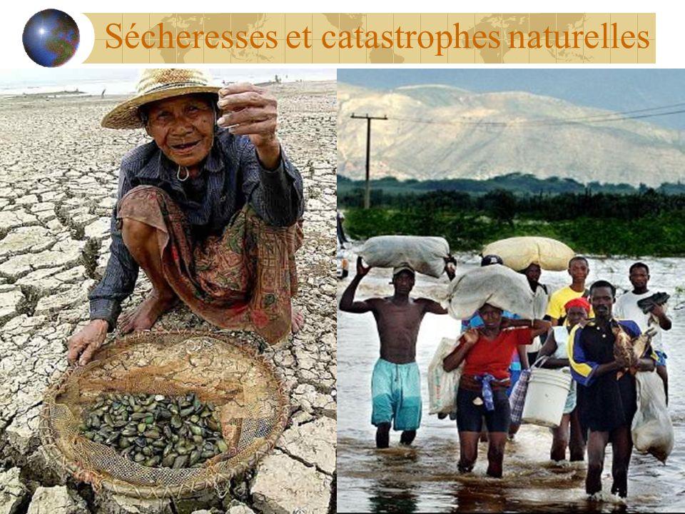 Sécheresses et catastrophes naturelles