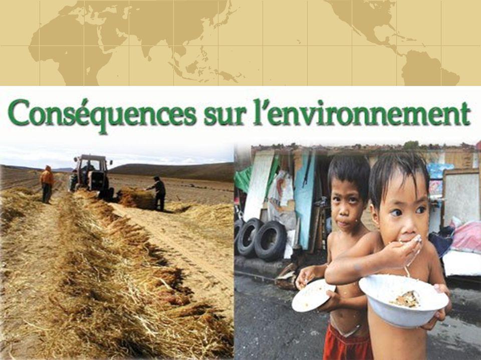 L'exploitation actuelle des terres s'avère nocive pour l'environnement