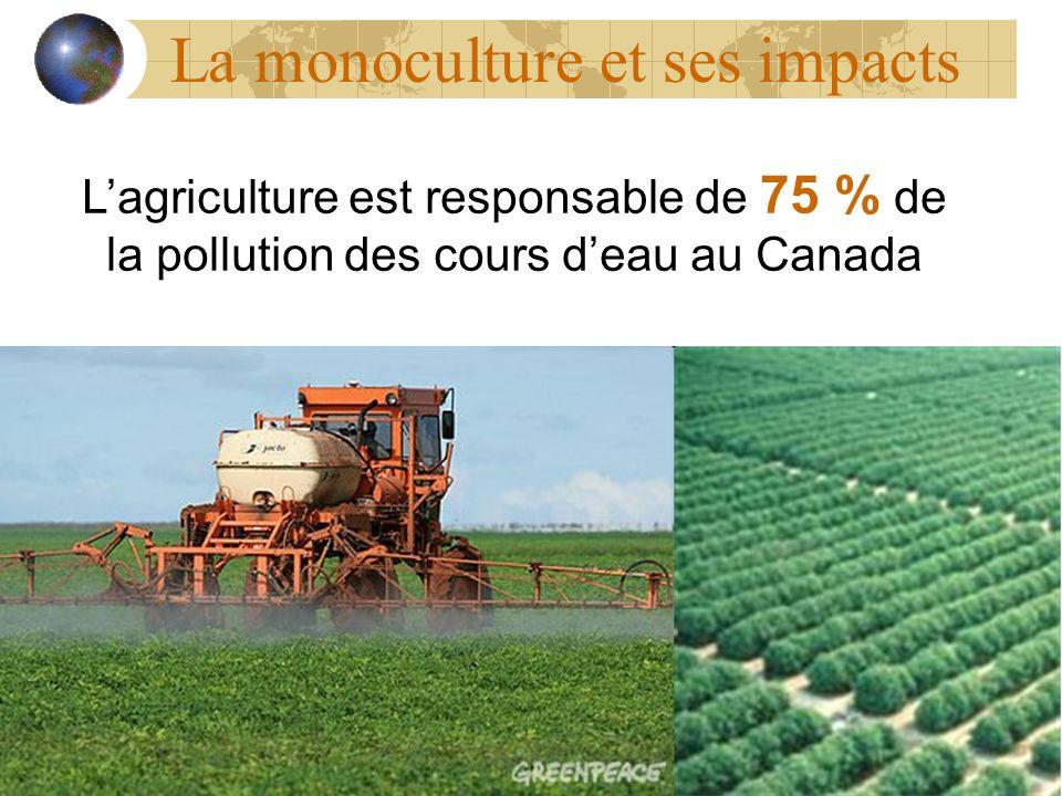 La monoculture et ses impacts