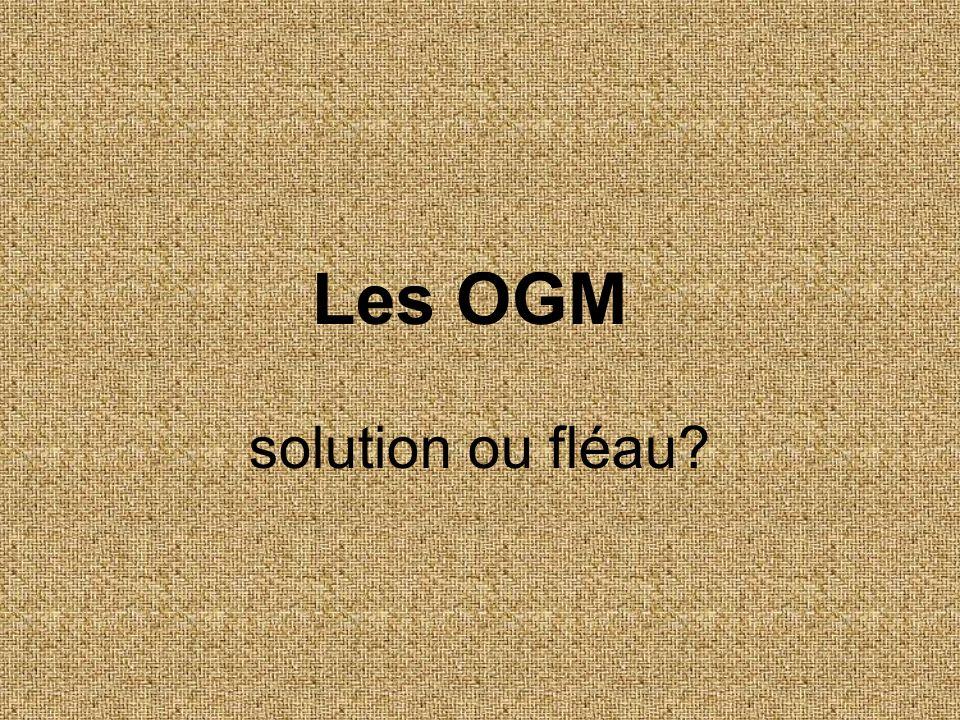Les OGM solution ou fléau