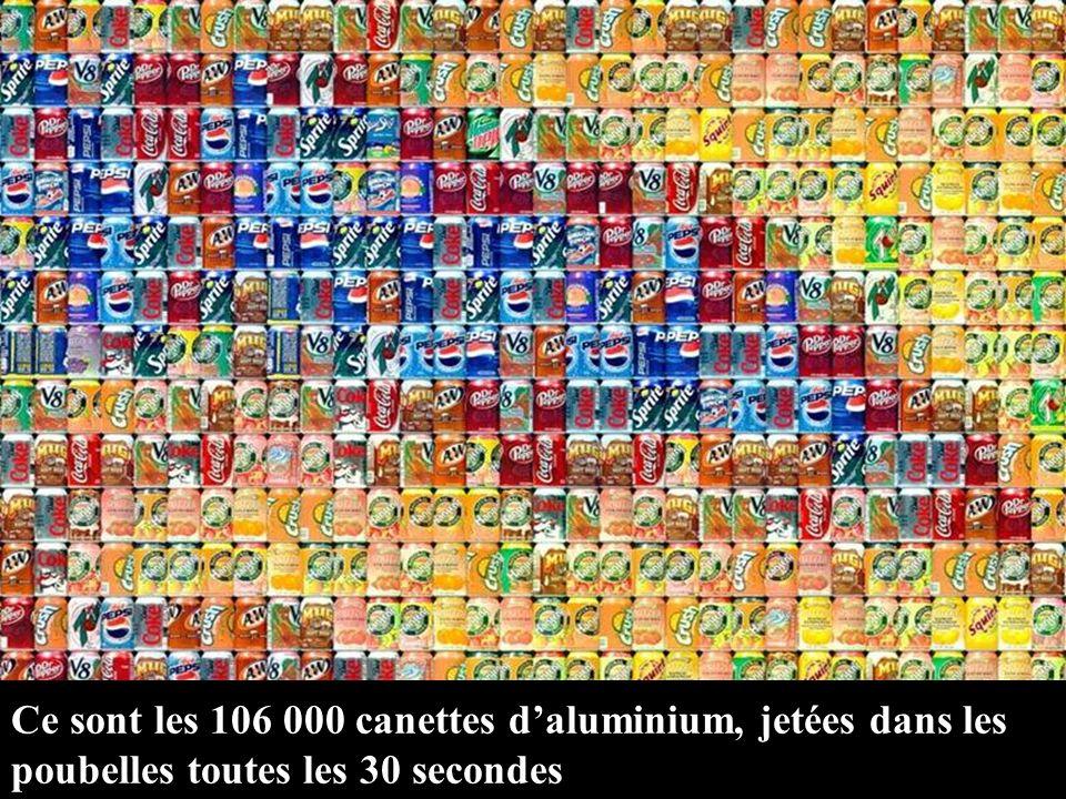 Ce sont les 106 000 canettes d'aluminium, jetées dans les poubelles toutes les 30 secondes