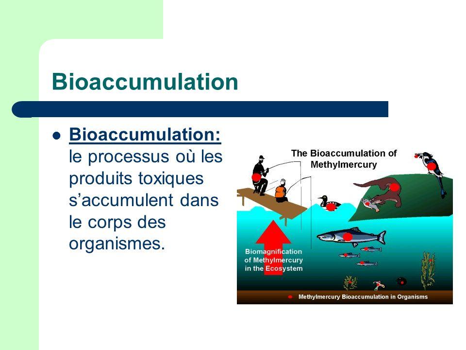 Bioaccumulation Bioaccumulation: le processus où les produits toxiques s'accumulent dans le corps des organismes.