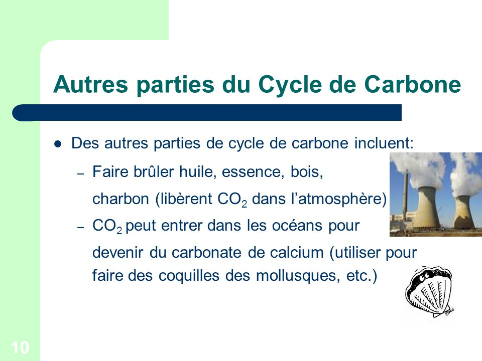 Autres parties du Cycle de Carbone