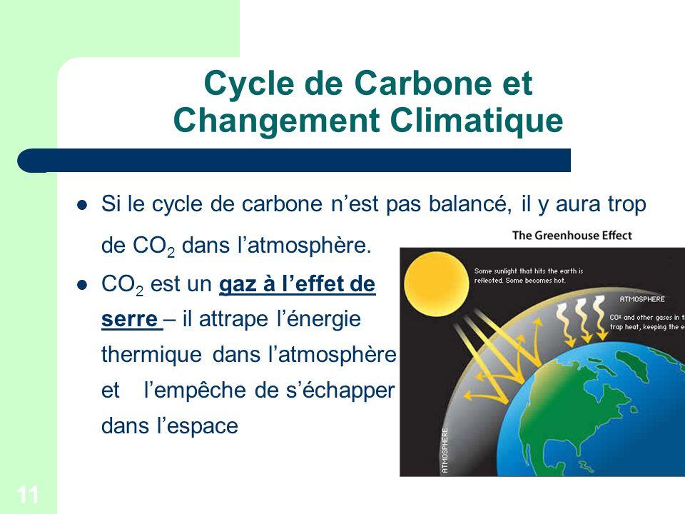 Cycle de Carbone et Changement Climatique