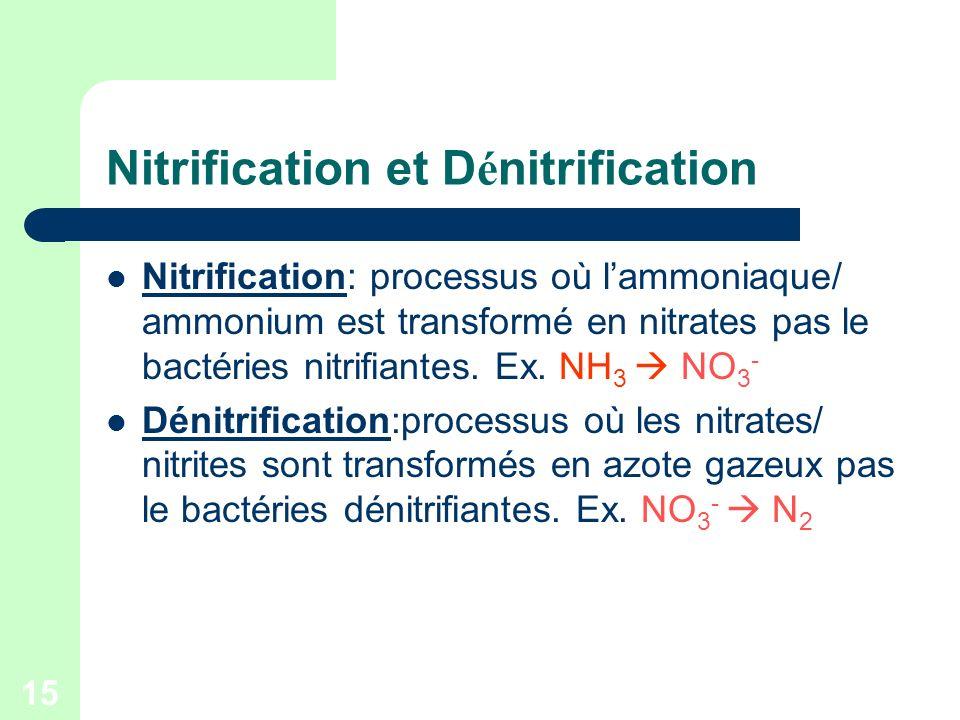 Nitrification et Dénitrification