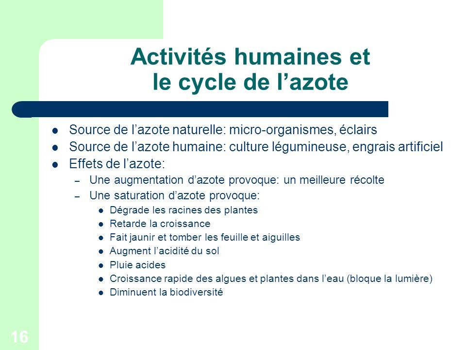 Activités humaines et le cycle de l'azote