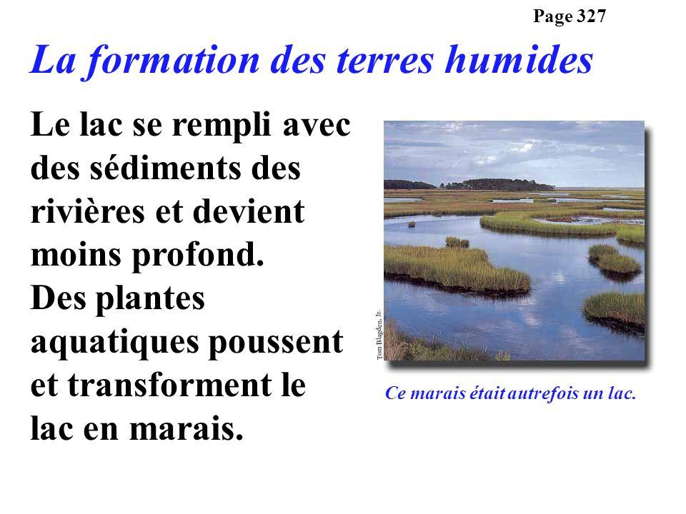 La formation des terres humides