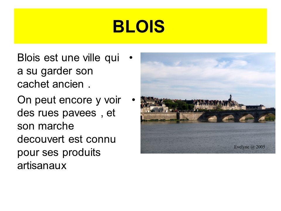 BLOIS Blois est une ville qui a su garder son cachet ancien .