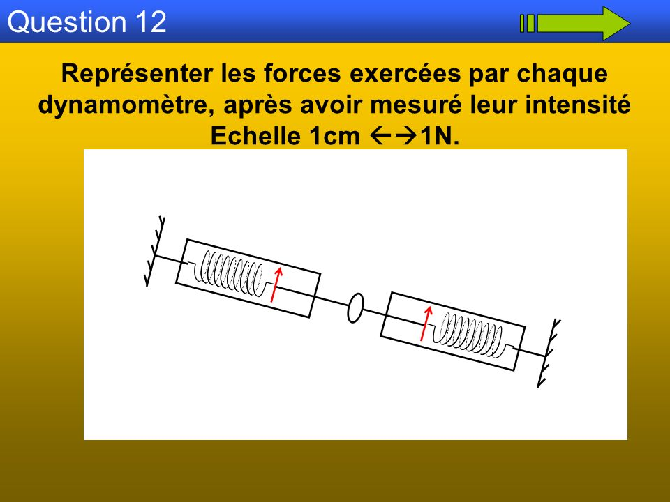 Question 12 Représenter les forces exercées par chaque dynamomètre, après avoir mesuré leur intensité.