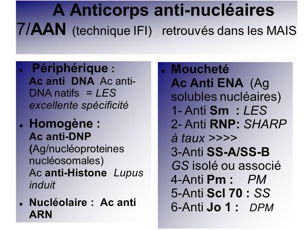 A Anticorps anti-nucléaires 7/AAN (technique IFI) retrouvés dans les MAIS