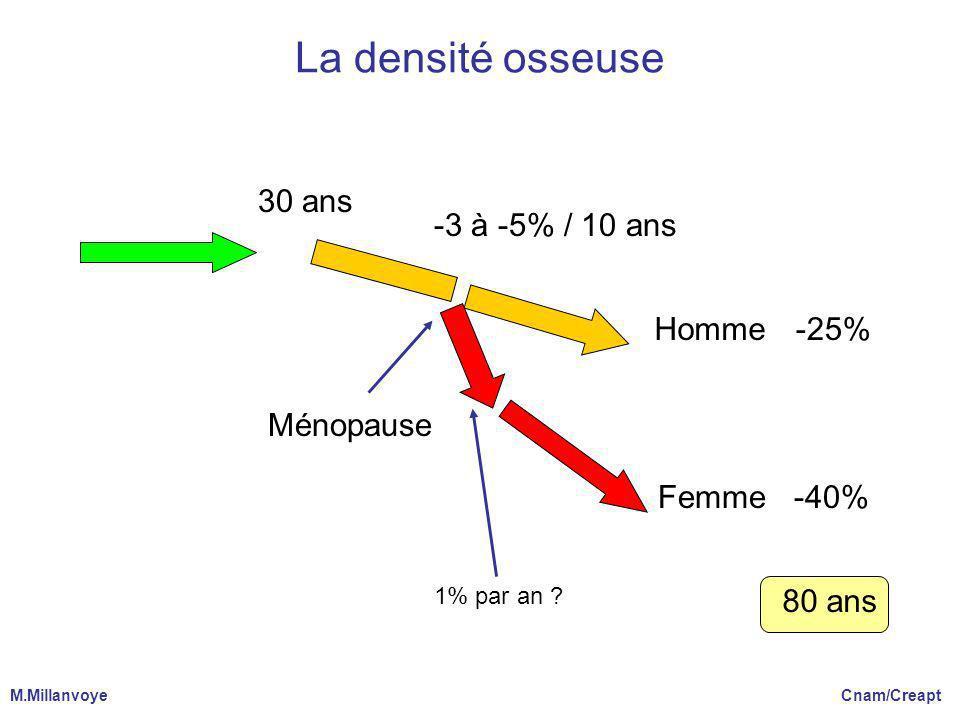 La densité osseuse 30 ans -3 à -5% / 10 ans Homme Ménopause Femme -25%