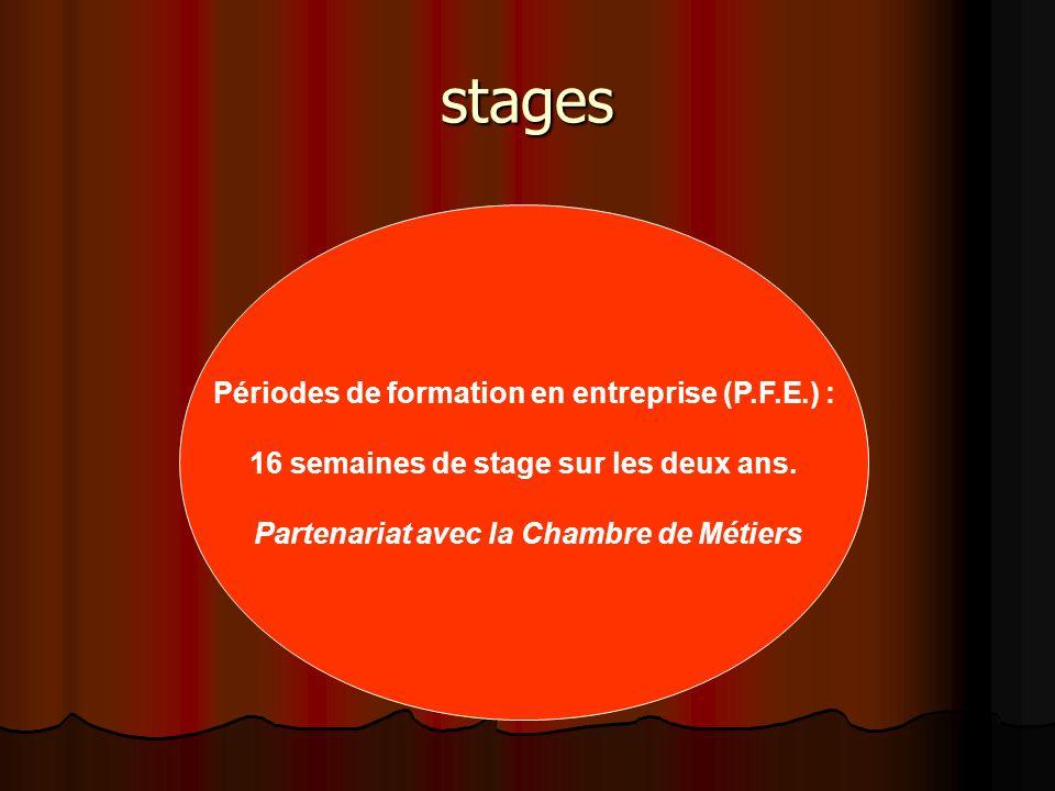 stages Périodes de formation en entreprise (P.F.E.) :