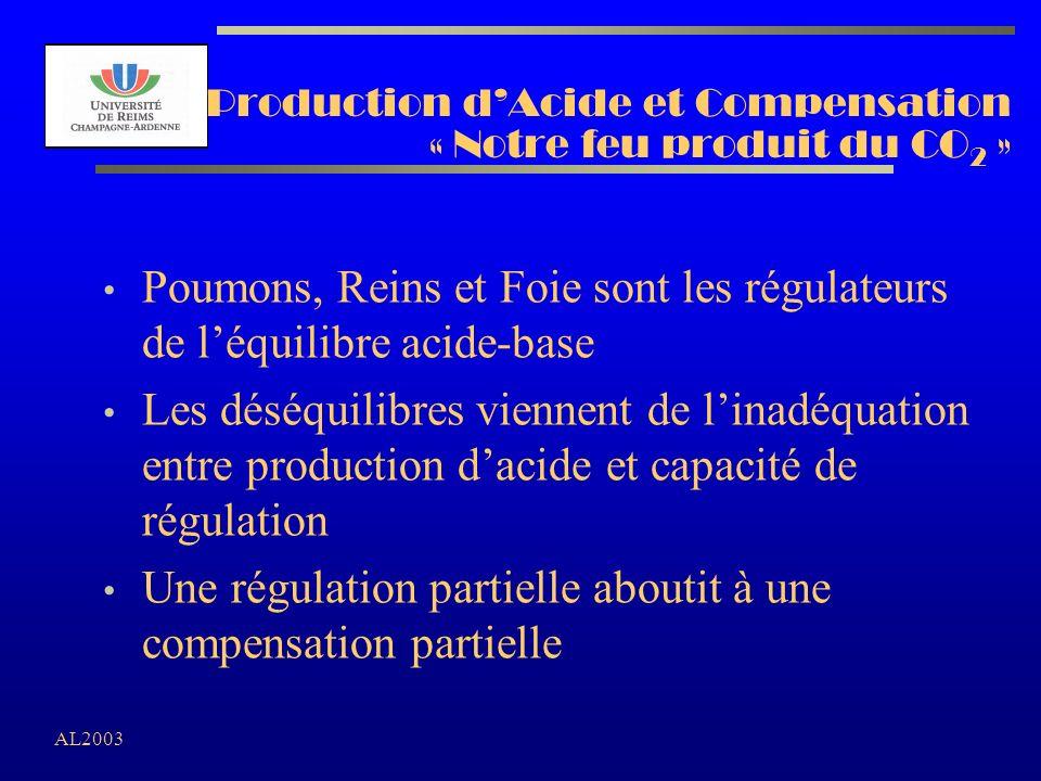Production d'Acide et Compensation « Notre feu produit du CO2 »