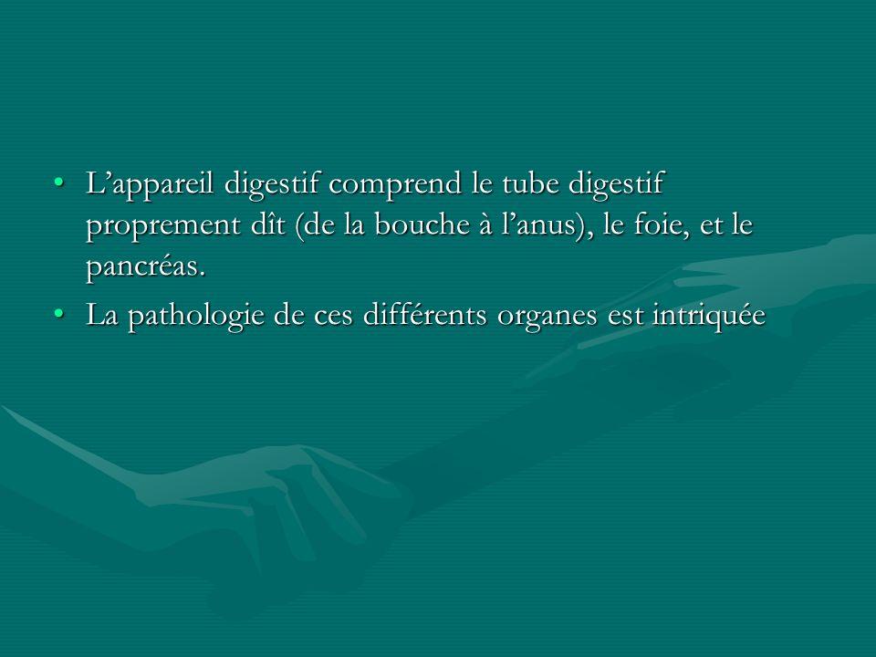 L'appareil digestif comprend le tube digestif proprement dît (de la bouche à l'anus), le foie, et le pancréas.