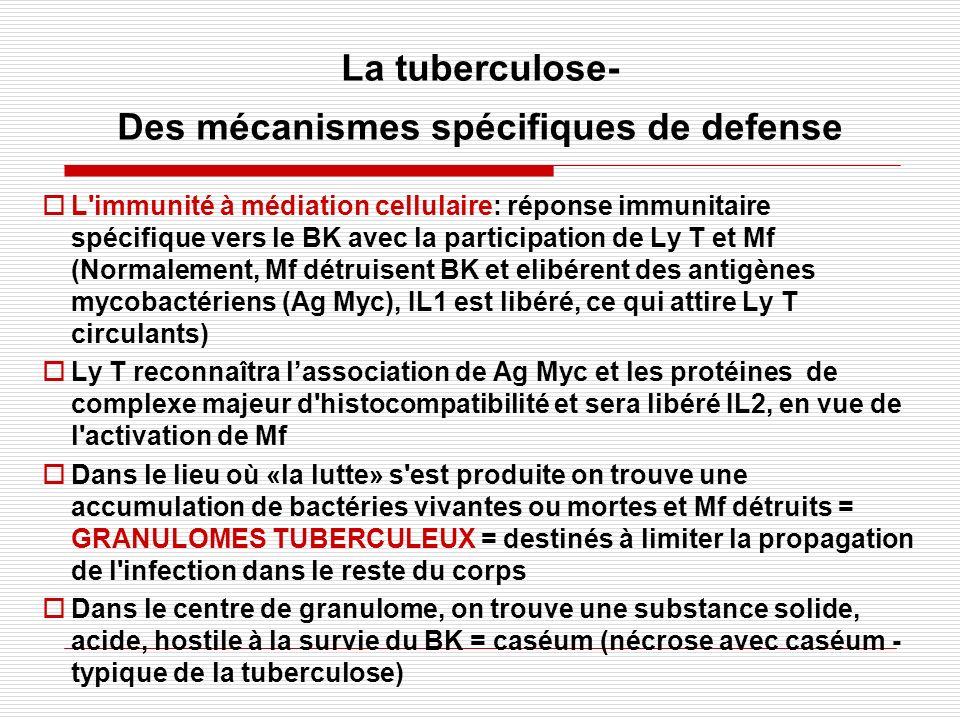 La tuberculose- Des mécanismes spécifiques de defense