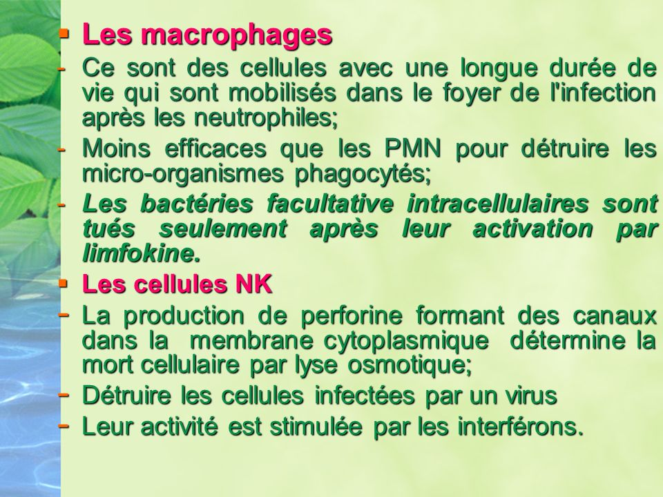 Les macrophages Ce sont des cellules avec une longue durée de vie qui sont mobilisés dans le foyer de l infection après les neutrophiles;