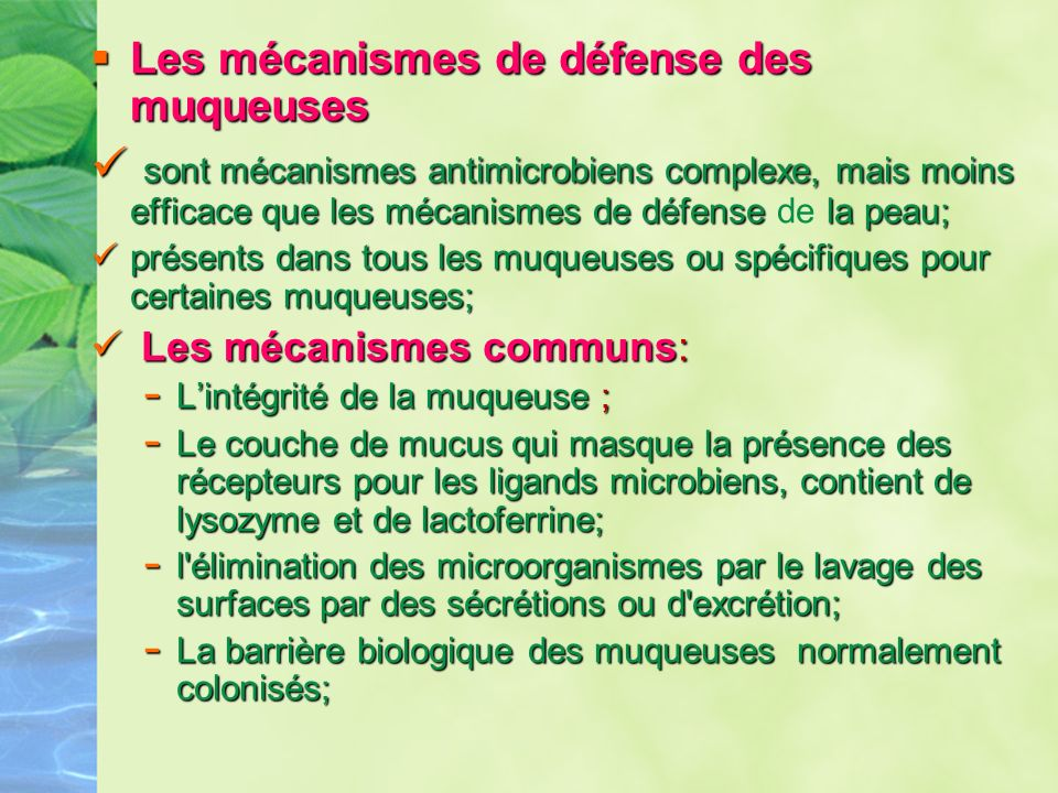 Les mécanismes de défense des muqueuses