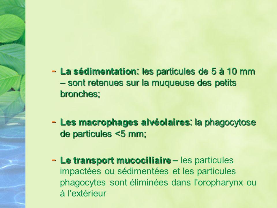 La sédimentation: les particules de 5 à 10 mm – sont retenues sur la muqueuse des petits bronches;