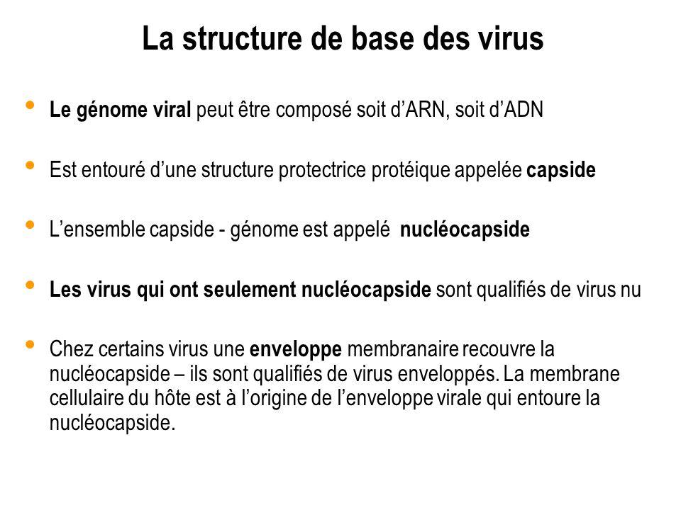 La structure de base des virus