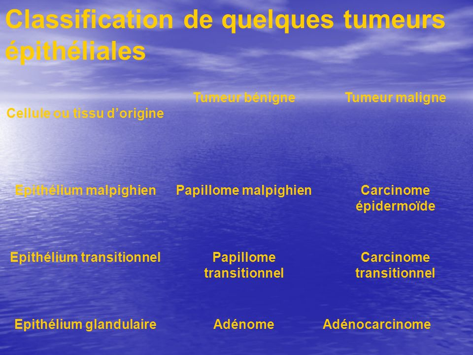 Classification de quelques tumeurs épithéliales