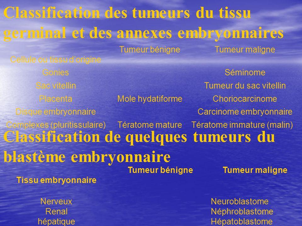 Classification des tumeurs du tissu germinal et des annexes embryonnaires