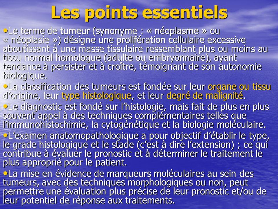 Les points essentiels
