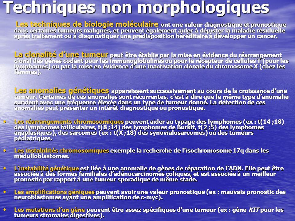 Techniques non morphologiques