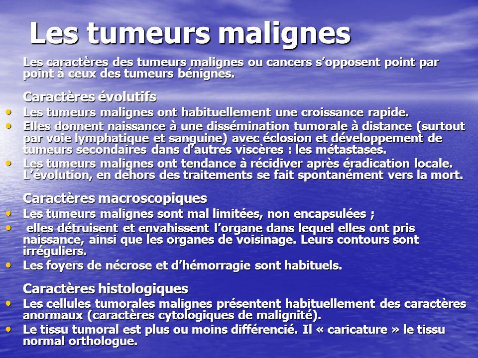 Les tumeurs malignes Les caractères des tumeurs malignes ou cancers s'opposent point par point à ceux des tumeurs bénignes. Caractères évolutifs.