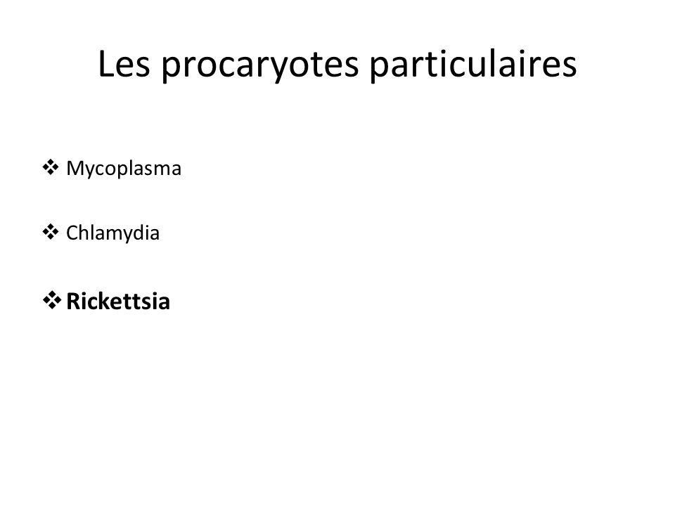 Les procaryotes particulaires