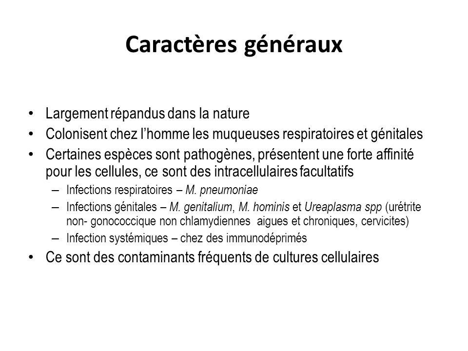 Caractères généraux Largement répandus dans la nature