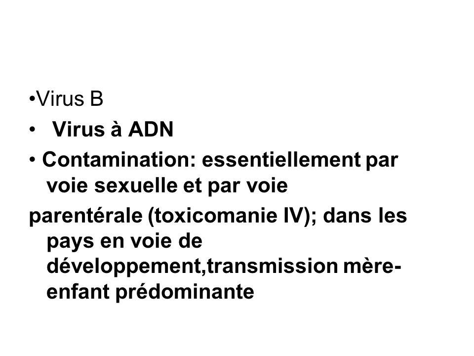 •Virus B Virus à ADN. • Contamination: essentiellement par voie sexuelle et par voie.