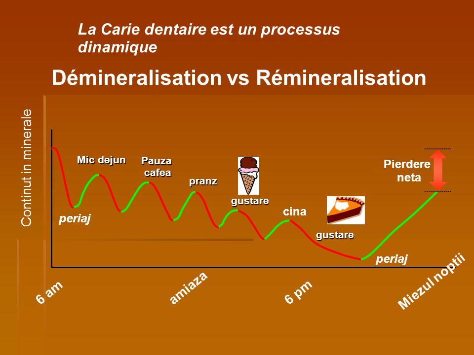 Démineralisation vs Rémineralisation