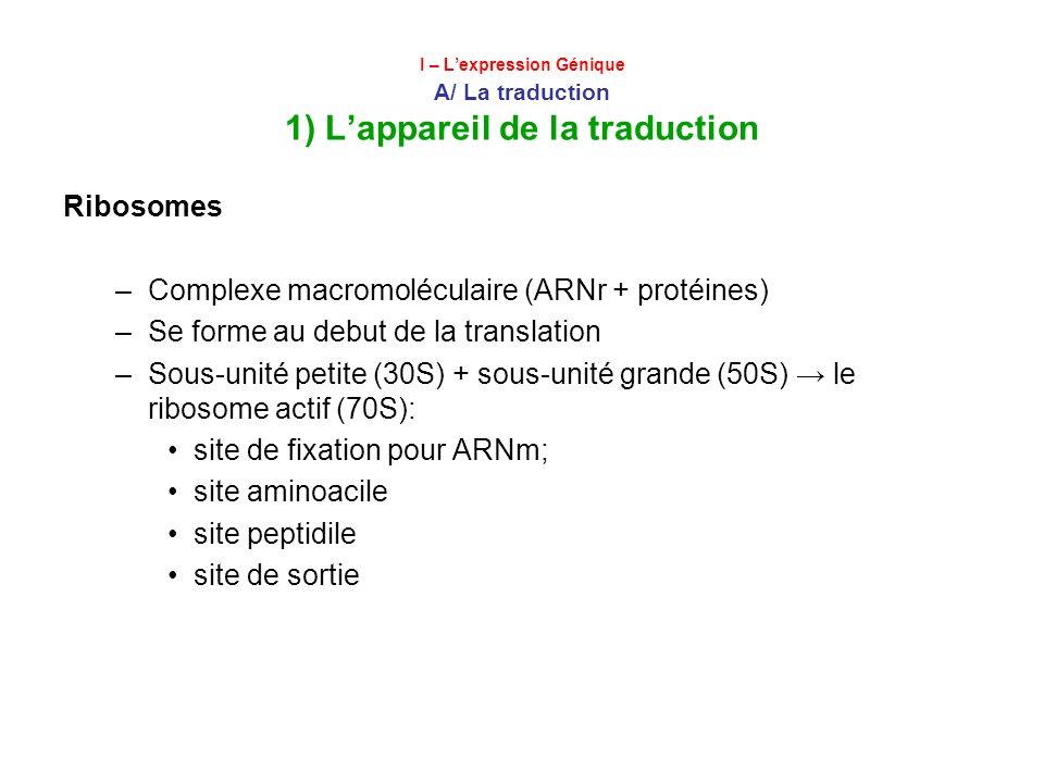 Complexe macromoléculaire (ARNr + protéines)