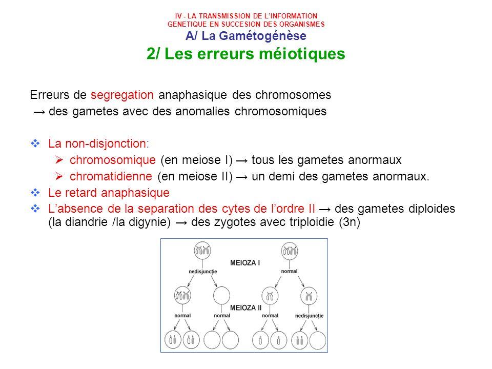 Erreurs de segregation anaphasique des chromosomes
