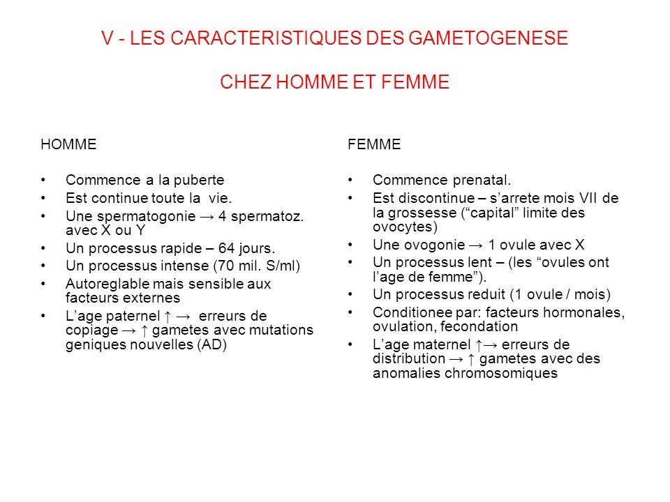 V - LES CARACTERISTIQUES DES GAMETOGENESE CHEZ HOMME ET FEMME