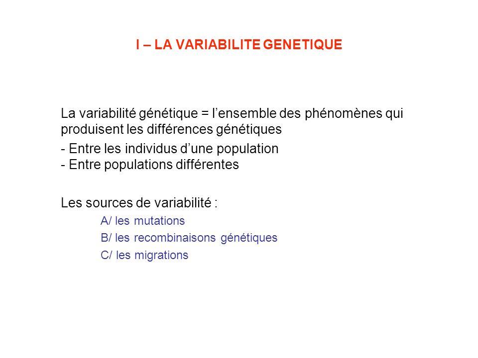 I – LA VARIABILITE GENETIQUE