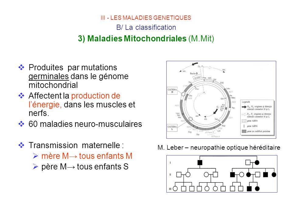 M. Leber – neuropathie optique héréditaire
