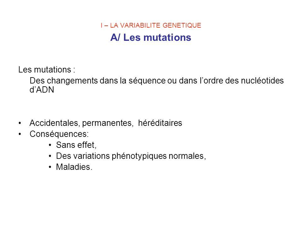 I – LA VARIABILITE GENETIQUE A/ Les mutations