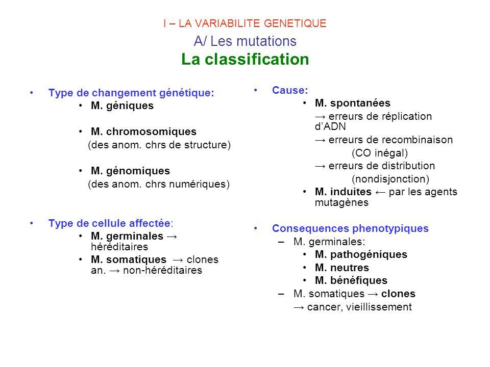 I – LA VARIABILITE GENETIQUE A/ Les mutations La classification