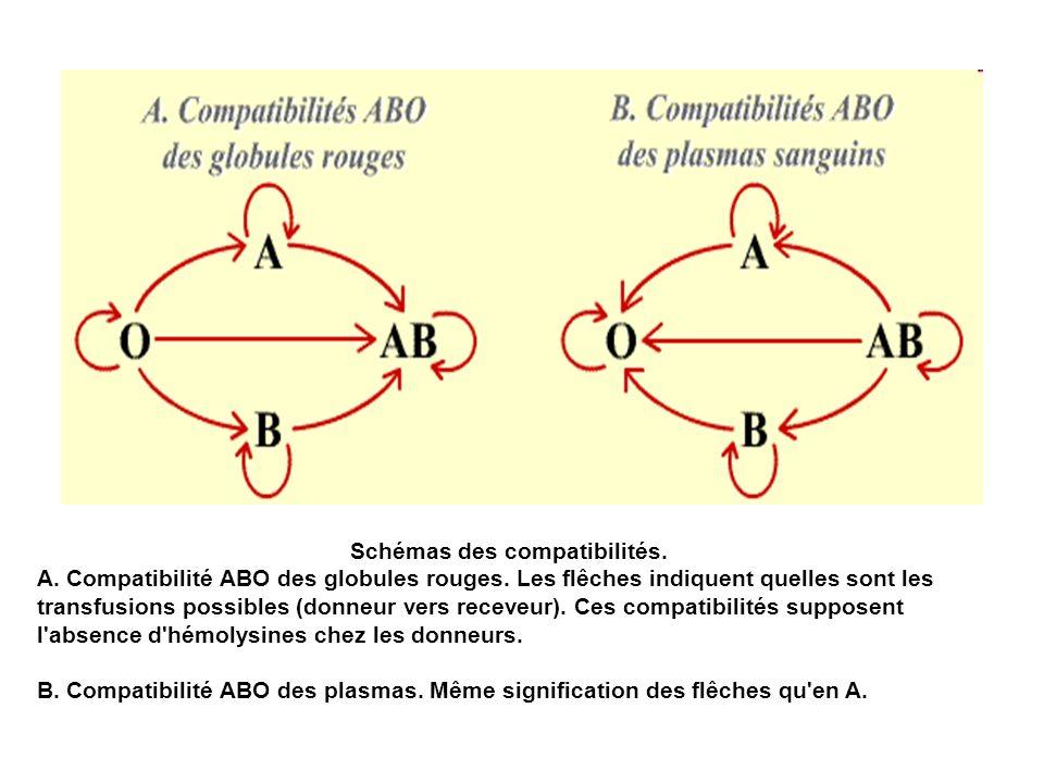 Schémas des compatibilités.