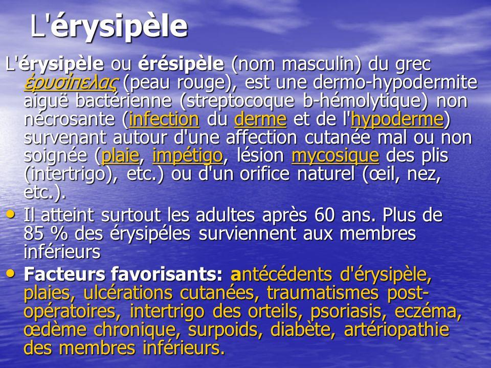 L érysipèle
