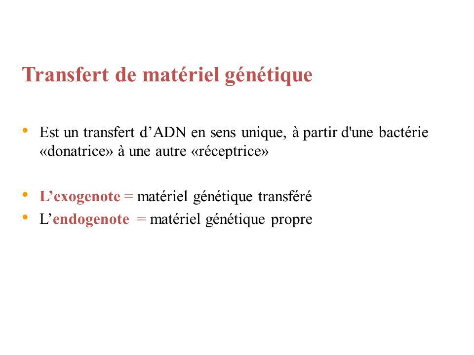 Transfert de matériel génétique